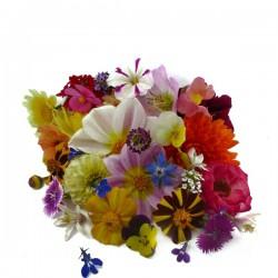 Mezclum flores